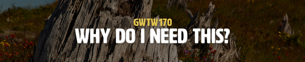 Why Do I Need This? (GWTW170)