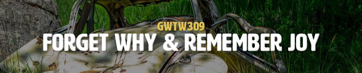 Forget Why & Remember Joy (GWTW309)