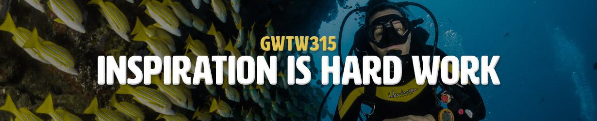 Inspiration is Hard Work (GWTW315)