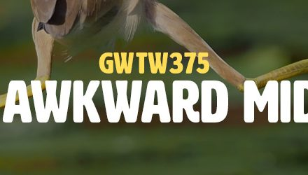 The Awkward Middle (GWTW375)
